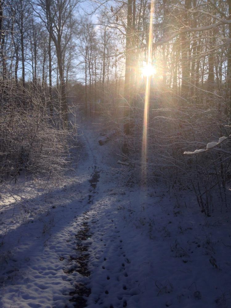 Der erste Lauf im Schnee